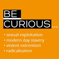 Be Curious logo