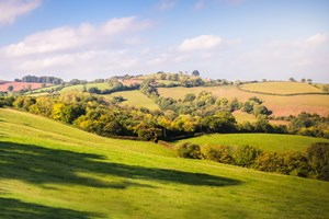 Mid Devon Commits to Climate Change Target