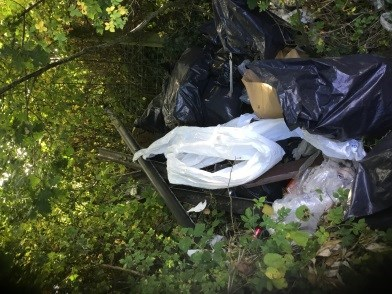 An image of fly tipping waste dumped in a hedge