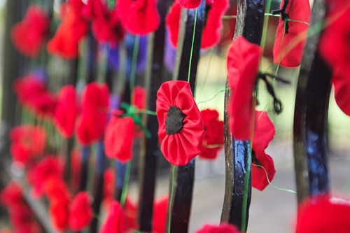Image of railings adorned with fabric poppies